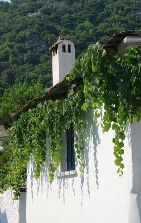 Detail of traditional house with grape , Thassos Greece photo