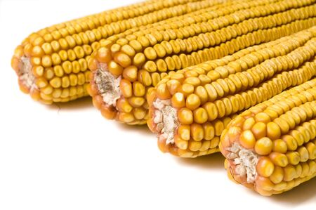 Close up of dry corn on white background photo