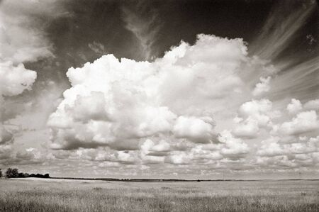 serbia landscape: Meadow landscape with beautiful white clouds monochrome added noise