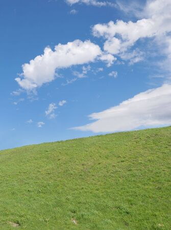 Green grass field and the blue sky  with white clouds photo