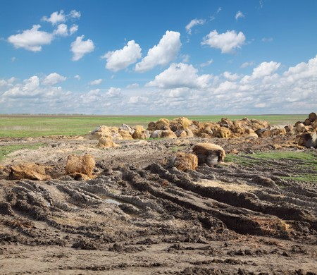 Rural area scene, heap of straw  and mud photo