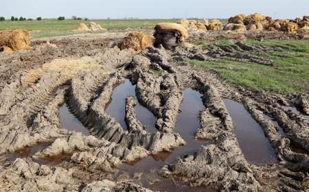 Rural scene heap of straw and mud photo