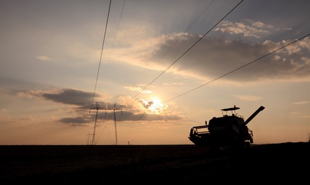 Combine in field under high voltage electrical pylon with flock of mosqutoes, late afternoon and contra light photo