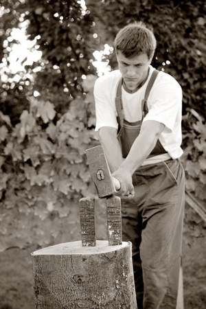 logger: Chopping wood with wedge and hammer Stock Photo