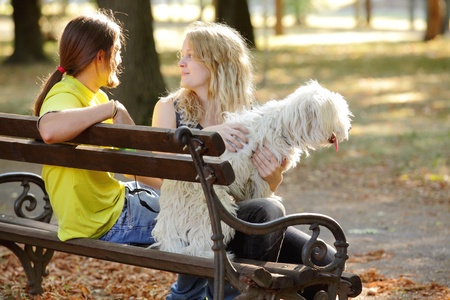 Young couple with white dog at bench photo
