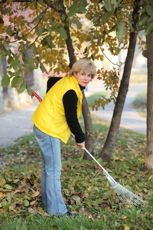 Mature woman raking leaves in a garden photo
