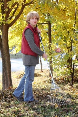 groundskeeper: Mature woman raking leaves in a garden