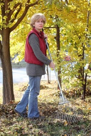 groundskeeper: Mature woman raking leaves in a garden