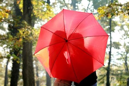 mujer enamorada: Silueta de la joven pareja detrás de paraguas en un bosque