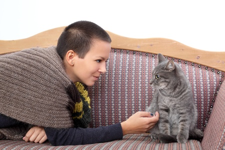 sitter: Young woman and gray domestic cat at sofa Stock Photo