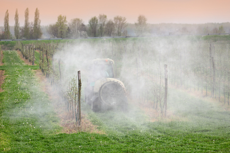 fungicide: Tractor sprays  insecticide or fungicide in apple orchard  Stock Photo