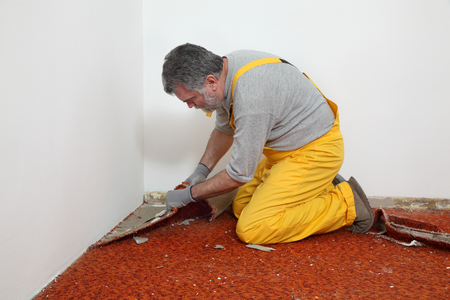 Adult worker removing old carpet in room Stockfoto