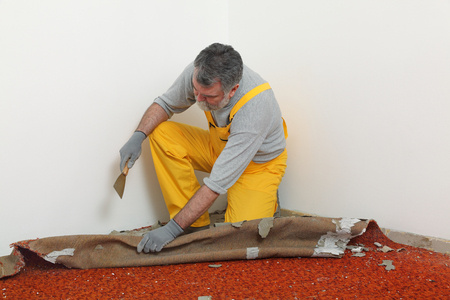 Adult worker removing old carpet in room Stock Photo