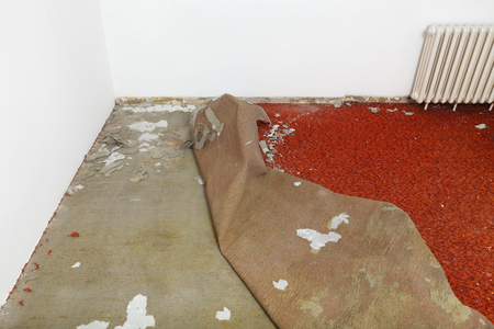 carpet stain: Home renovation, carpet remove in a room