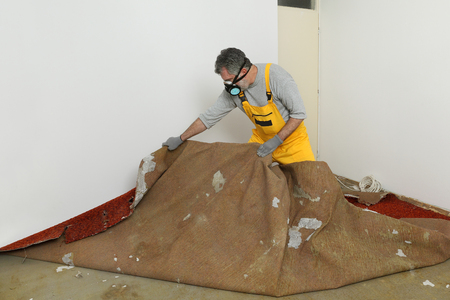removing: Adult worker with protective mask removing old carpet in room Stock Photo