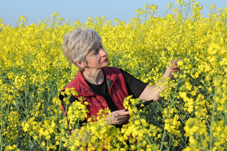 to examine: Agronomist or farmer examine blooming canola field, holding tablet Stock Photo