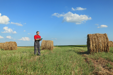 to examine: Farmer or agronomist examine field with bale of hay, early summer