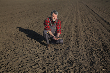 agronomist: Farmer or agronomist examine quality of soil in field