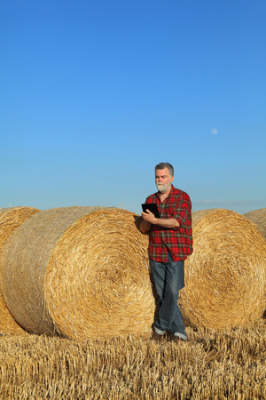 agronomist: Farmer in wheat field after harvest examining bale, rolled straw, using tablet