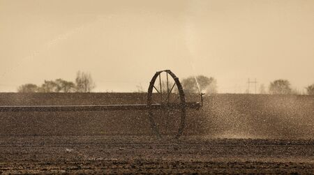 Watering of cultivated field in early spring, irrigation equipment spraying water to land in sunset or sunrise Imagens