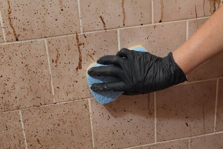 Female hand in protective glove cleaning dirty tiles using sponge, messy and dirty bathroom, very bad condition Stockfoto