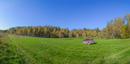 copse: Green field with orange car on it panorama in sunny weather, the birch copse behind