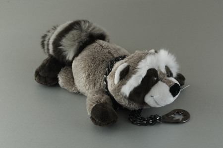 Soft toy for children Raccoon  With a medallion Stock Photo - 17232772