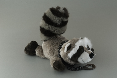 Soft toy for children Raccoon  With a medallion Stock Photo - 17232771