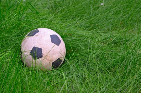 The soccer ball lies on the green grass. Stock Photo