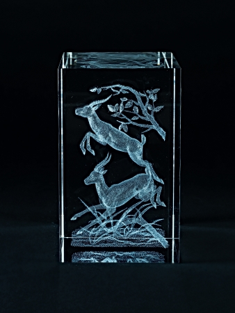 Laser engraving deer inside the glass on a black background. Stock Photo