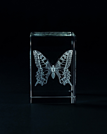 engraver: Laser engraving butterfly inside the glass on a black background. Stock Photo