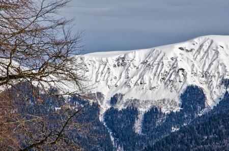ski trail Rosa Khutor, Sochi, Russia.