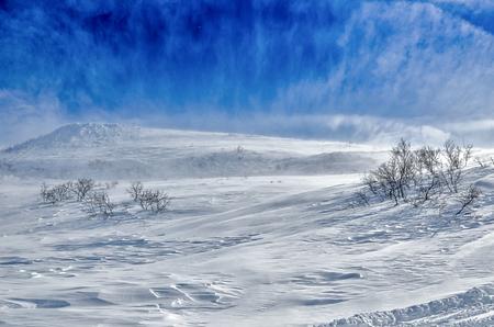 kamchatka: Freeride sui vulcani della Kamchatka, Russia.