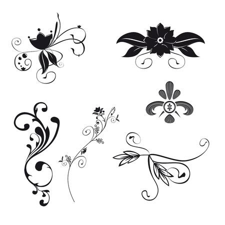ornaments vector: Set di sei illustrazione ornamenti floreali. Vector file separati con itens.