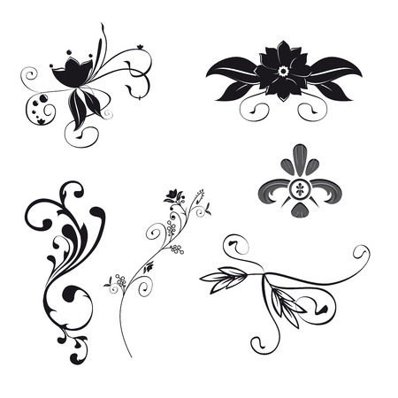 Set of six floral ornaments illustration. Vector file with separated itens.