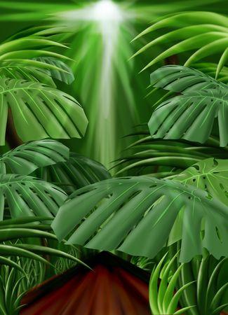 Jungle Background Illustration Stock Photo