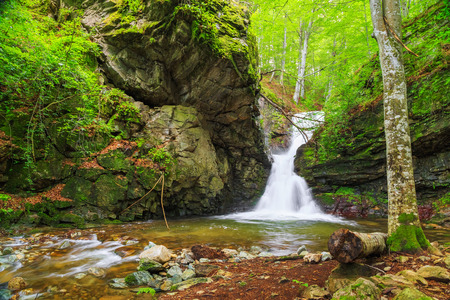 waterfall in the forest: Beautiful small waterfall In Balkan Mountains, Bulgaria. The White water waterfall. Stock Photo