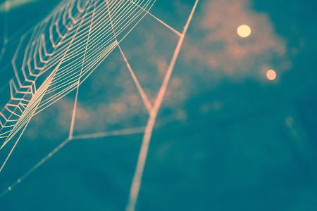 クローズ アップで蜘蛛の巣の青で抽象的なイメージ。