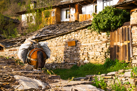 laden: Horse laden with sacks standing in the garden of an old stone complex of a house ad outbuildings in Leshten village, Bulgaria in the Rhodope mountains