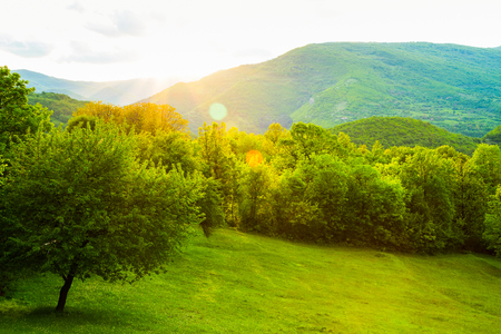 Scenic landscape view of lush green spring countryside with sun flare over the mountains casting a glowing golden light on the trees and field