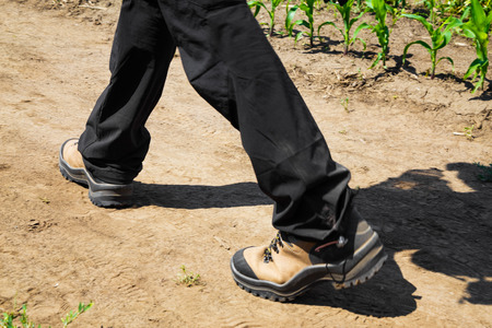 dirt path: Person wearing black pants and hiking boots walking along a dirt path on a sunny day, low angle close up of the lower legs Stock Photo