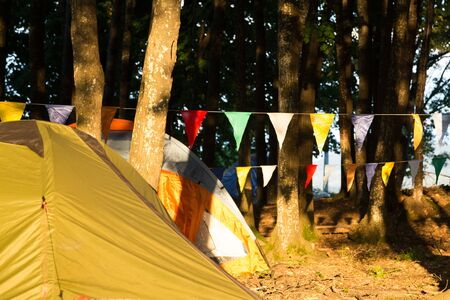 pitched: Tents pitched at a campsite amongst trees with garlands of colorful festive bunting or flags strung between trunks