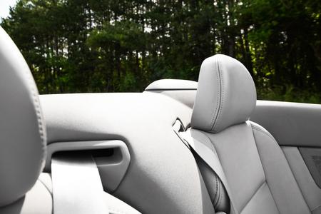 arboles frondosos: Detalle de cinturón de seguridad retráctil en un coche cablet o deportivo con tapicería de cuero gris en una vista de primer plano con un fondo de árboles frondosos fuera del coche