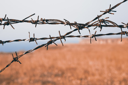 Close up view on sharp strands of barb wire over a blurry rural landscape with copy space conceptual of captivity, safety and security , being a prisoner or the perimeter agricultural fence Stock Photo