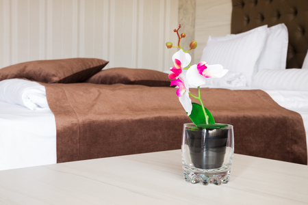 Blooming pink and white artificial flower in glass near empty bed with brown blanket and headboard Imagens