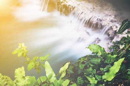 Aerial view of a beautiful waterfall cascading over a shelf of rock into a tranquil pool below viewed over the top of fresh green leaves and a yellow flower with the sun glow in the corner