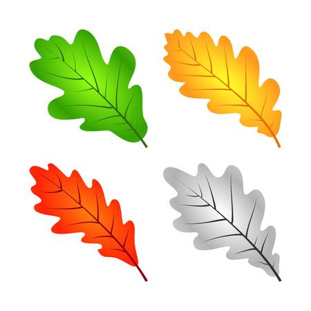 Stel Kleurrijk Eiken Blad. Silhouet Op Een Witte Achtergrond. Vector Stock Illustratie
