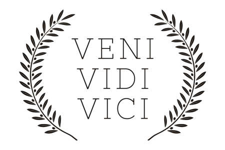 Veni Vidi Vici. Latin Quote Poster. Translation: I came, I saw, I conquered. Inspirational Quote
