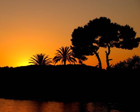 Sun setting behind hills in front of the sea with silhouette trees