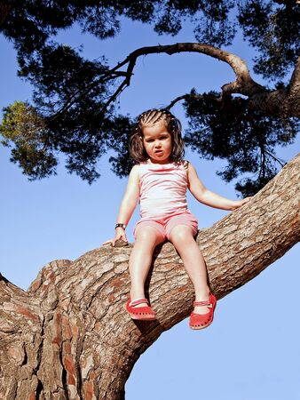 Little girl sat in the branches of a tree Stock Photo